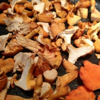 Making Chanterelle Mushroom and Turkey Chili