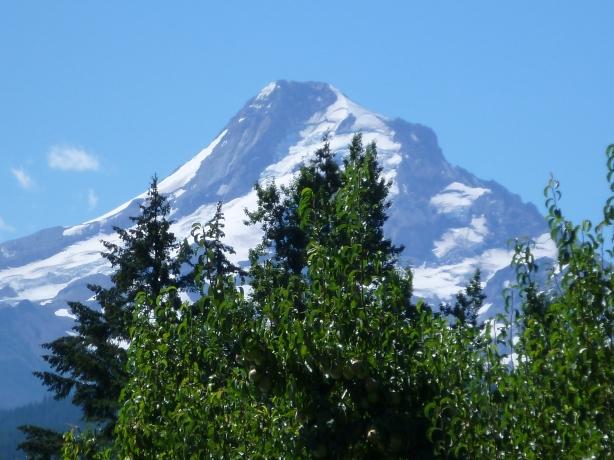 Mt. Hood Summer 2013