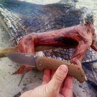 Hunting and Cooking Wild Rabbit on the Oregon Coast - Survival Bros.com