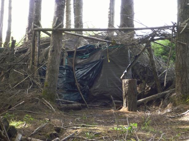 Best Tarp Shelter in Woods