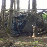 The Ultimate Survival Shelter in The Woods