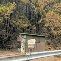 Terwilliger Fire Updates - Willamette National Forest Info #Oregon